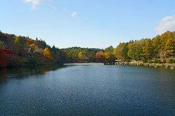画像1: 古牧温泉発奥入瀬渓流や十和田湖や八甲田山頂観光後青森市内ヘのタクシー手配